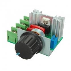 Voltage Dimmer 50-220VAC 2000W - Speed Controller